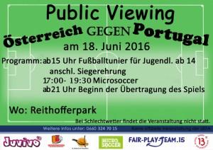 flyer public viewing schw
